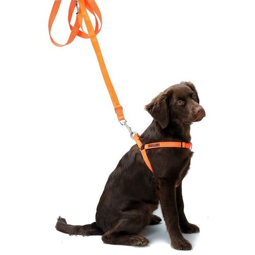FARM-LAND® Hundegeschirr SAFETY DOG | Signalorange (reflektierend)