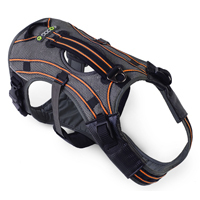 EQDOG® Hundegeschirr PRO HARNESS™ | Grau/Orange