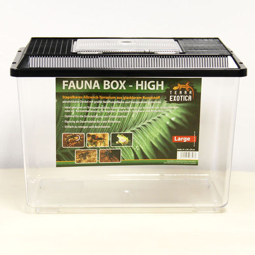 TERRA EXOTICA Fauna Box High