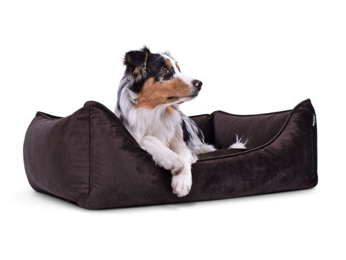 PADSFORALL® Hundebett DREAMCOLLECTION Velvetline | Braun