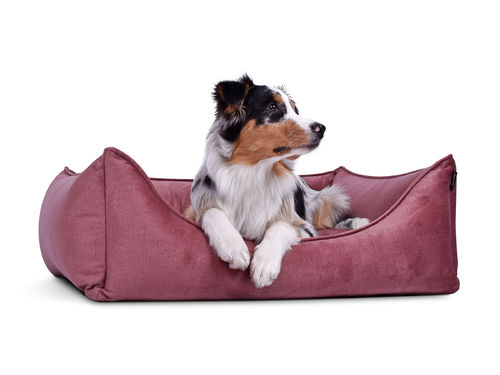 PADSFORALL® Hundebett DREAMCOLLECTION Velvetline | Rosa
