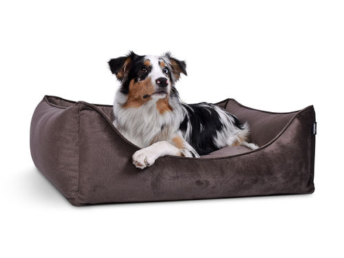 PADSFORALL® Hundebett DREAMCOLLECTION Velvetline | Taupe