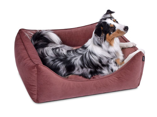 PADSFORALL® Hundebett DREAMCOLLECTION MF-Line | Blush