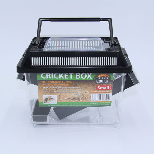 TERRA EXOTICA Cricket Box
